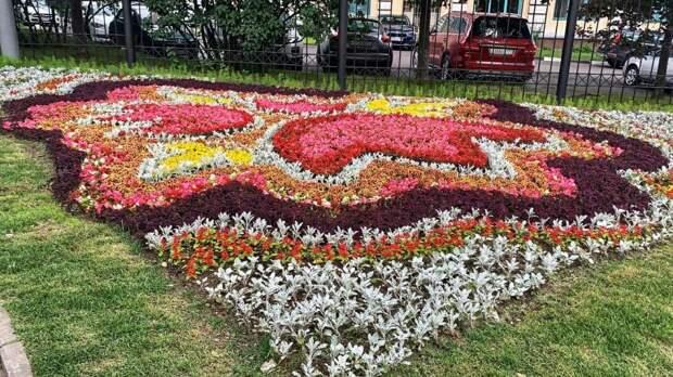 Площадь цветников составила более 40 тысяч «квадратов»/Фото пресс-службы префектуры СЗАО