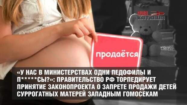 «У нас в министерствах одни педофилы и п*****сы?»: Правительство РФ торпедирует принятие законопроекта о запрете продажи детей суррогатных матерей западным гомосекам