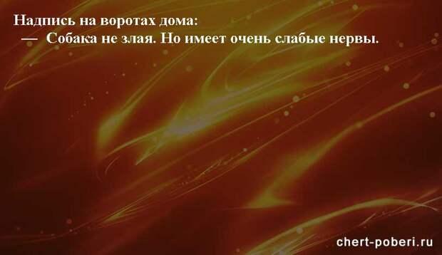 Самые смешные анекдоты ежедневная подборка chert-poberi-anekdoty-chert-poberi-anekdoty-36240913072020-20 картинка chert-poberi-anekdoty-36240913072020-20