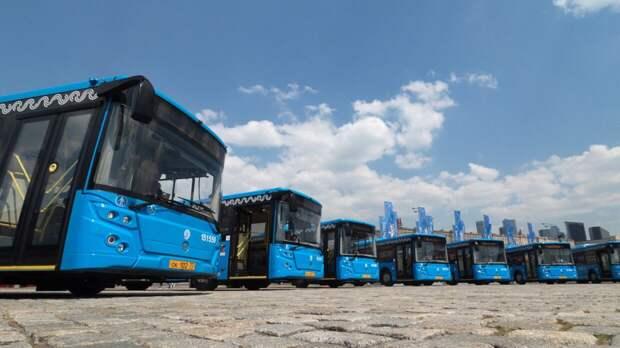 Подмосковье может стать первым регионом РФ, где запустят автобусы на водороде