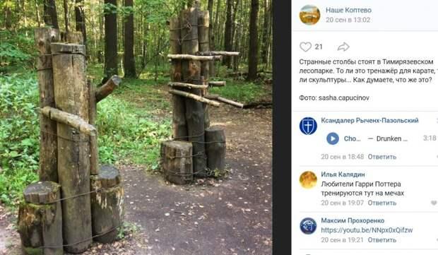 Фото дня: необычные самодельные сооружения в Тимирязевском парке