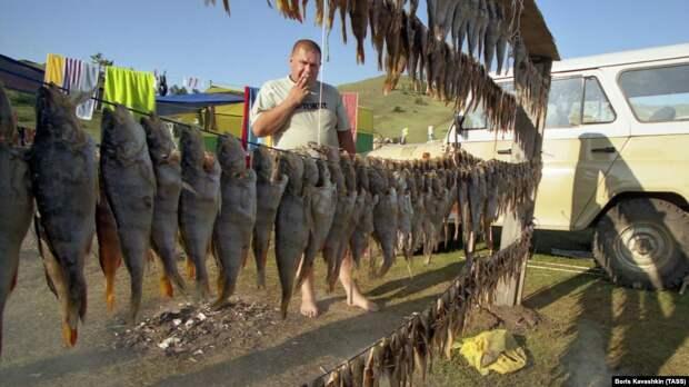 Правительство хочет взимать налоги с рыбаков-любителей за продажи рыбы