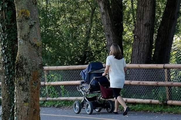 Госдума одобрила поправки о поддержке семей и беременных женщин