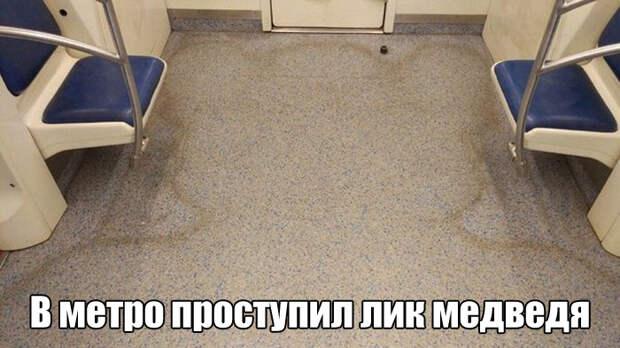 1476350384_kartinki-5
