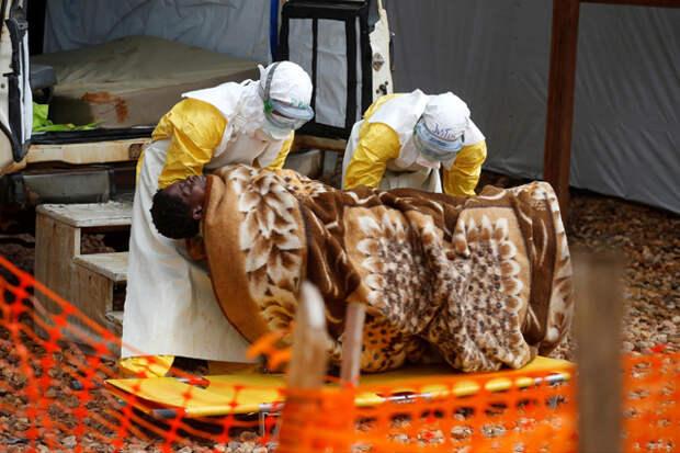 Не только коронавирус. Что известно о последних случаях заболевания бубонной чумой, корью и Эболой