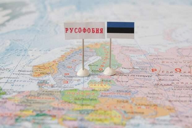 Премьер Эстонии нашла «уважительную» причину дискриминации русских