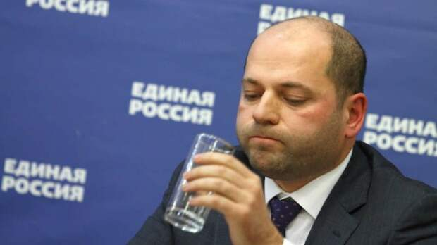 Скандально известный депутат-единоросс задекларировал доход в четыре копейки