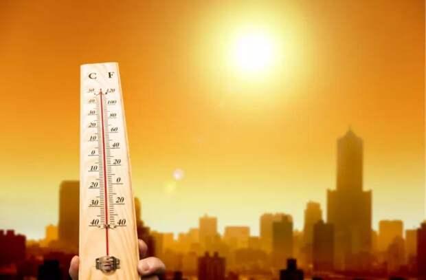 2020 год оказался рекордно жарким