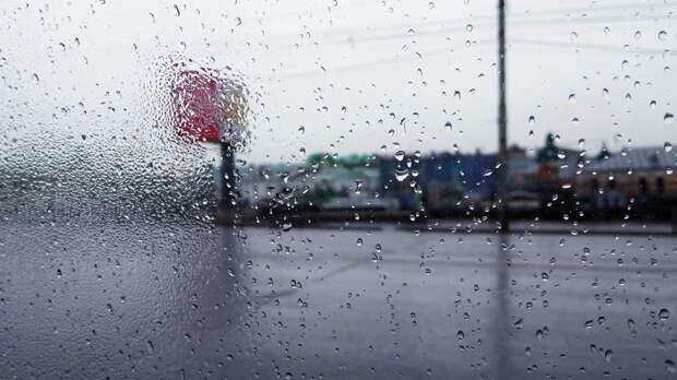 Теплым идождливым будет май вРостовской области
