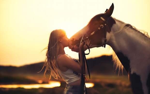 Обои девушка, закат, лошадь, дружба, Horse картинки на рабочий ...