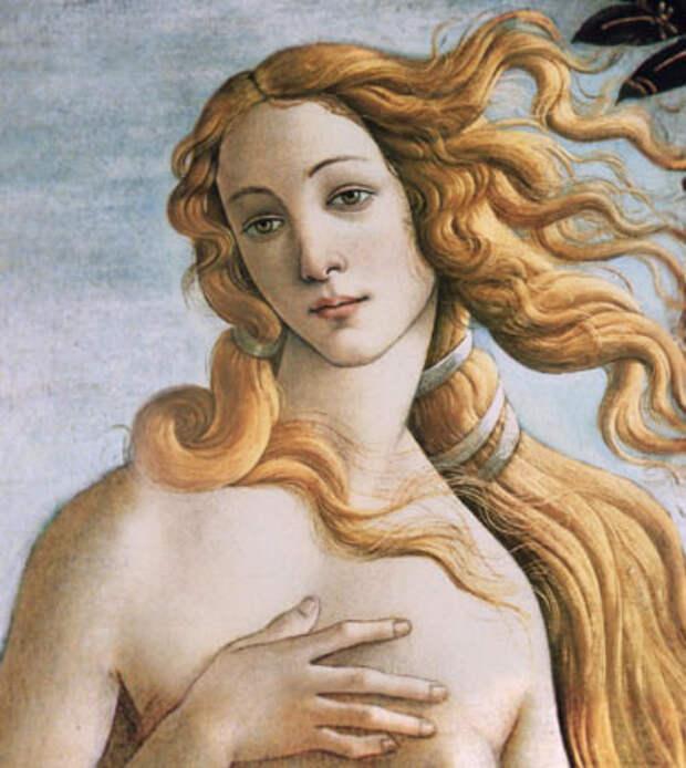 Симонетта Веспуччи - Флорентийская Венера