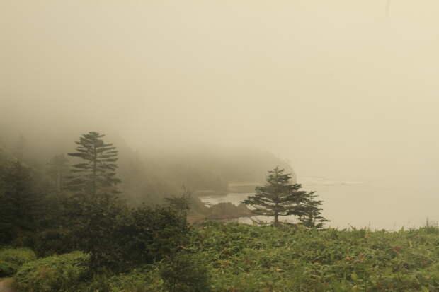 Путешествие 60+   Часть 2  остров Кунашир