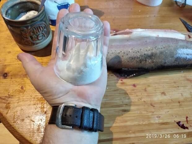 Как засолить форель? еда, засолка, рецепт, своими руками, форель