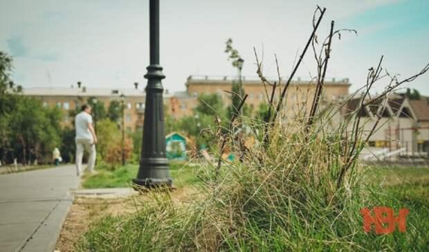 5 ляпов в парке на севере Волгограда, из-за которых его хочется обойти стороной