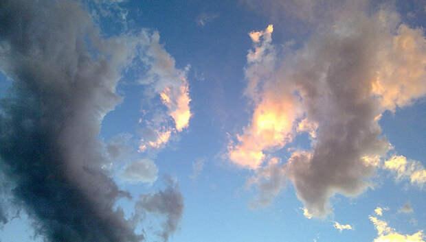 Переменная облачность без осадков ожидается в Подольске во вторник