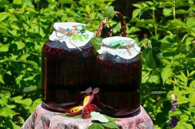20 вкусных заготовок из жимолости на зиму