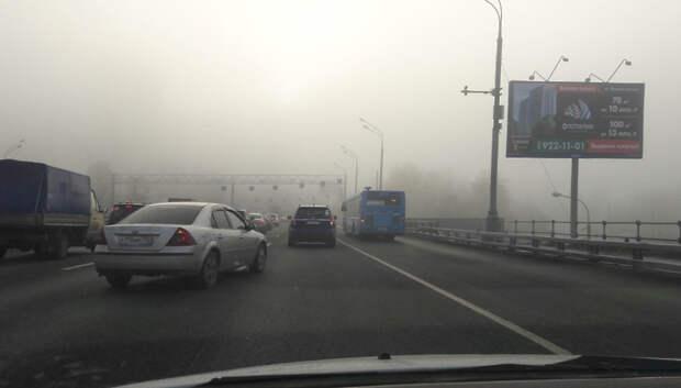 МЧС предупредило о тумане утром в среду в Подмосковье