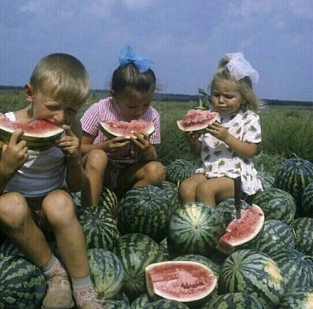 Фото: Privately.ru