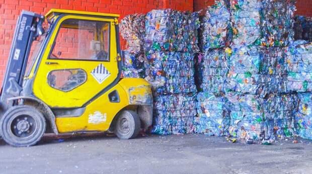 Активисты экоцентра на Соколе представили сериал о раздельном сборе мусора Фото с сайта mos.ru