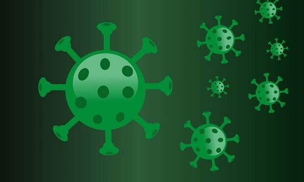 Количество больных коронавирусом в Севастополе увеличилось на 71 человека