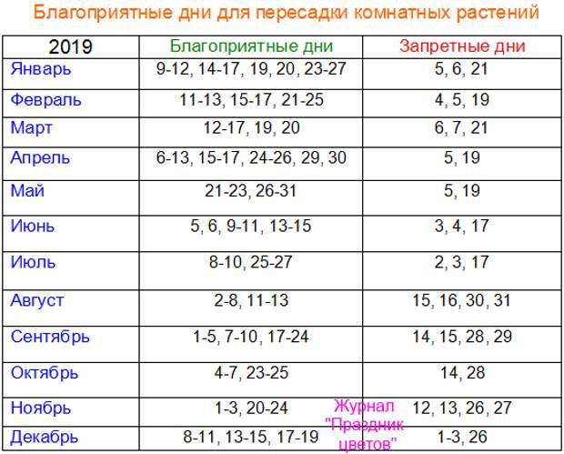 Благоприятные дни для пересадки комнатных растений по лунному календарю в 2019 году
