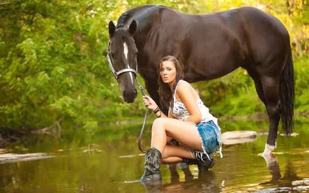 Почему девушки любят лошадей? Почему девушки любят лошадей коней?
