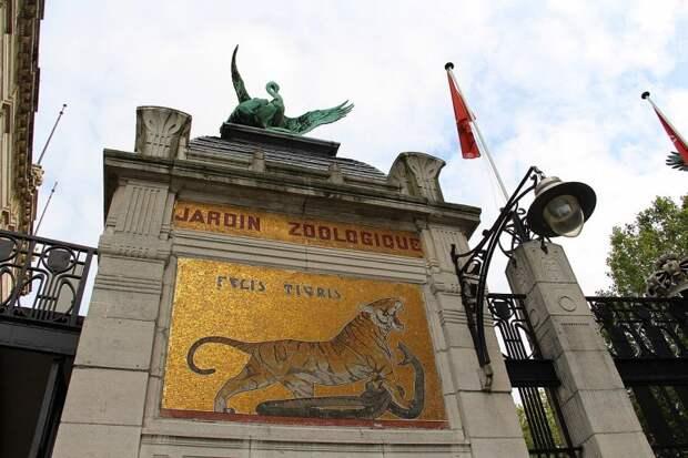 история зоопарка
