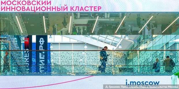 Сергунина: Московский инновационный кластер запустил сервис цифрового факторинга/Фото Д. Гришкин. mos.ru