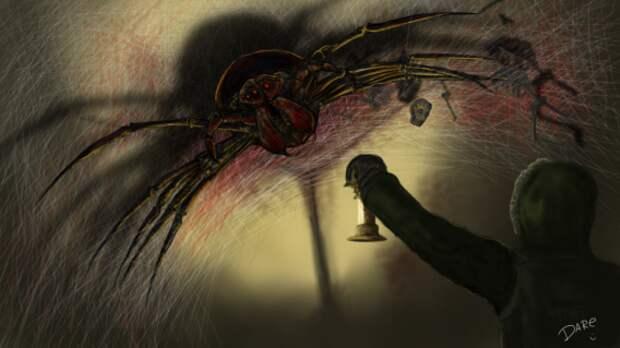 Чернобыльский паук-мутант загадочная история, кошмар, смерть, тайна, триллер