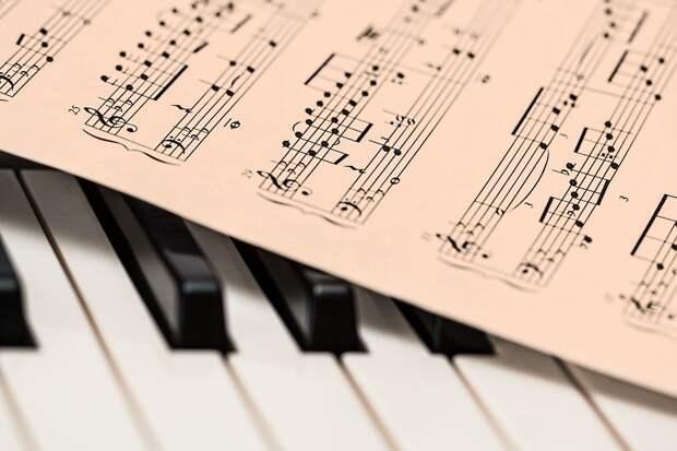 Человек способен выучить элементарную теорию музыки за несколько месяцев / Фото: pixabay.com