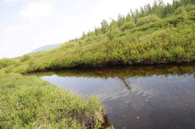 Спорткомплекс «Чекерил» в Удмуртии сбрасывал в реку Чумойка неочищенные сточные воды