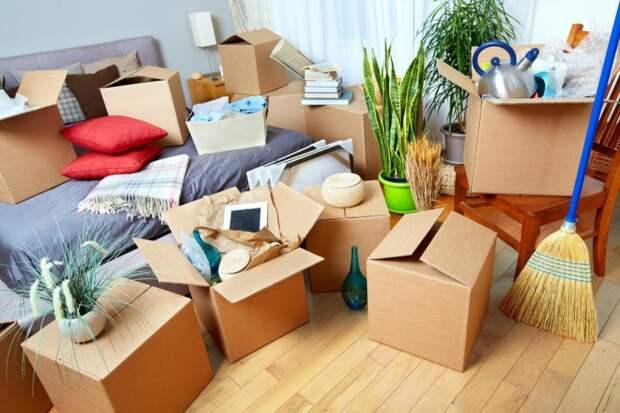 «По-хорошему выставить их из квартиры не получилось, пришлось по-плохому: обманом»