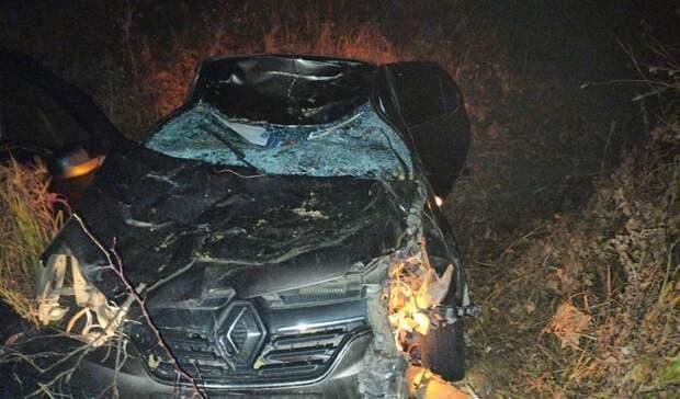 Двое жителей Башкирии погибли после ДТП с лосём