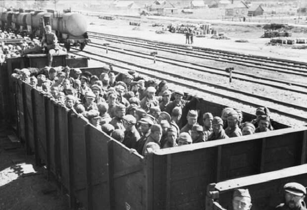 Зачем Гитлер отправил советских пленных в Африку