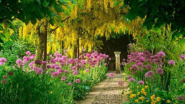 цветущий благоухающий сад