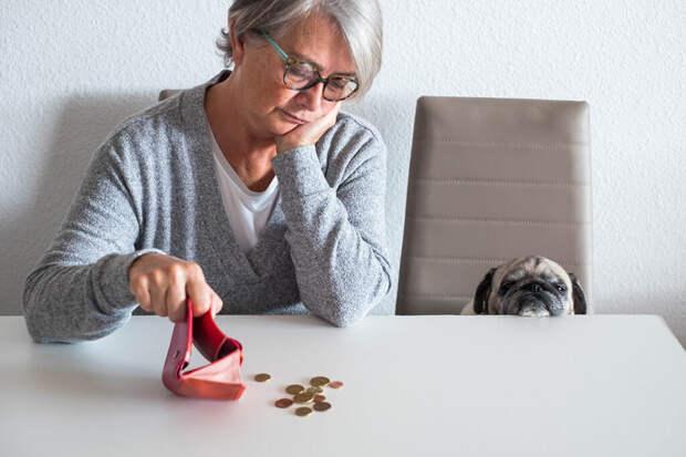 Россиянам посоветовали рассчитывать на собственный капитал на пенсии
