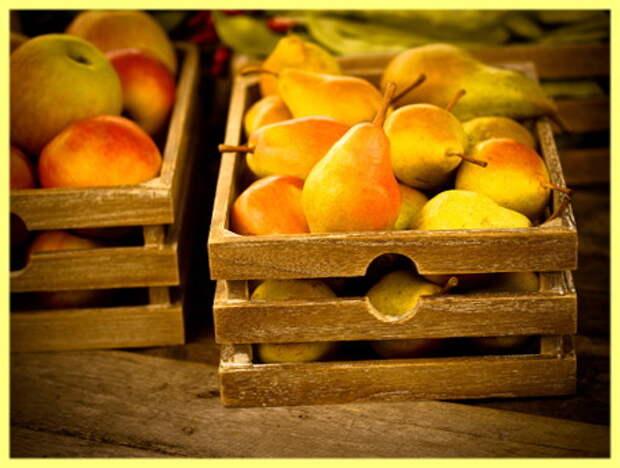 frutta-cassetta-123198487