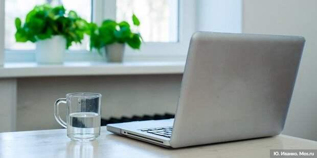 Сергунина: в Москве пройдет серия онлайн-практикумов для начинающих предпринимателей. Фото: Ю.Иванко, mos.ru