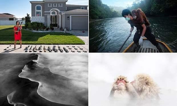 Лучшие работы с конкурса AllAbout Photo Award 2020
