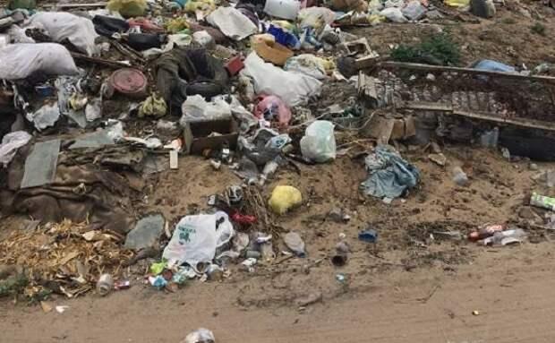 Минприроды: В Бурятии улучшают экологическую обстановку