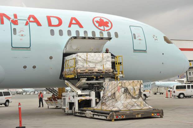Еще три пассажирских авиакомпании переключились на доставку срочных грузов