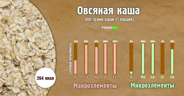 Овсяная каша инфографика, каша, полезности, польза
