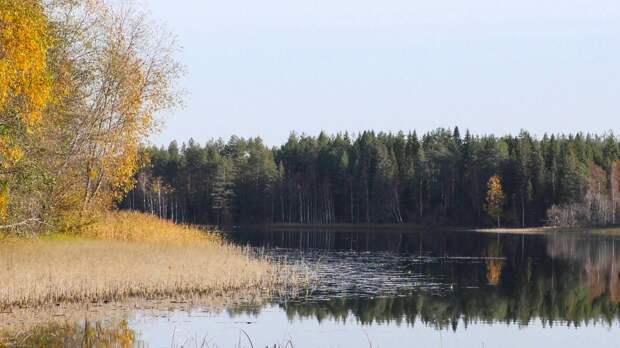 Красоты России (#591)