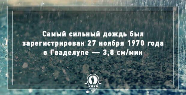 8 интересных фактов о дожде дождь, факты
