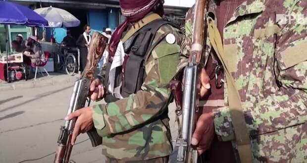Почему общение талибов и таджиков беспокоит Москву