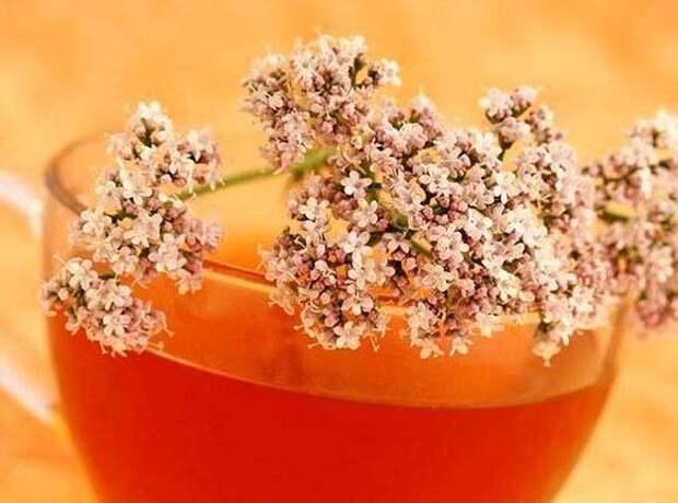 Укроп, мёд и валериана: всего 1 столовая ложка сотворит чудо с вашими сосудами!