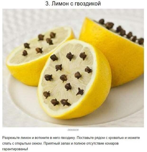 10 способов борьбы с комарами и их укусами