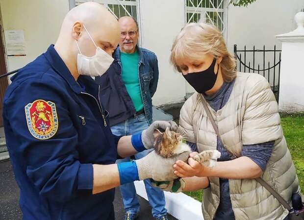Летучие мыши, лошади и лисы: около 500 животных и птиц спасли за год в Москве