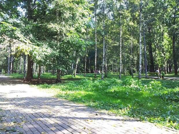 Парк/ Фото из открытого источника