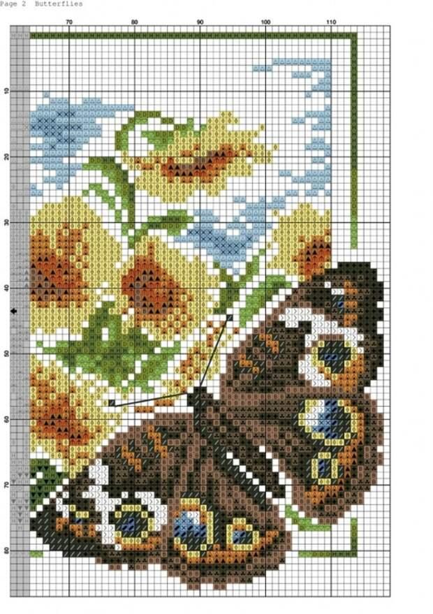 Butterflies_-002-723x1024 (493x700, 298Kb)